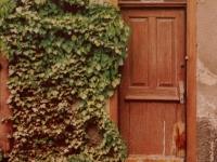 Poster Butzbacher Türen
